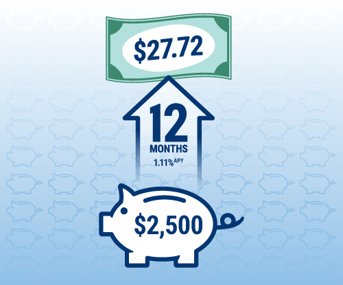 An RBFCU Choice Money Market account with $2,500 invested for 12 months with a 1.21% APY would earn $30.25.