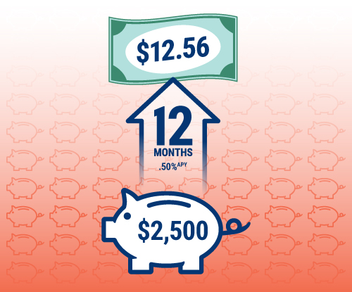 An RBFCU Classic Money Market account with $2,500 invested for 12 months with a .60% APY would earn $15.